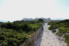 Vue sur Bonifacio (elina.tsamigos) Tags: bonifacio bunifaziu corse corsica france nature natura rando hike hiking landscape love
