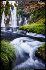 Snowmelt (Praveen's PRotography) Tags: california water landscape nikon stream july falls waterfalls northern burney 2014 d600