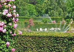 A Hot Summer Day at Baden-Baden 03 (MJWoerner49) Tags: roses summer spring badenbaden rosegarden watering cooling hedges summerday gnneranlage lichtentalerallee lichtentaleralley
