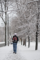 Winter (Photobiophilia) Tags: trees winter snow ontario walking kingston canon30dcanada