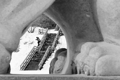 King of the Garden. (ben giesbrecht) Tags: wood winter urban canada sports statue gardens canon snowboarding edmonton lion rail alberta kink shred shoulda dalebailey danished