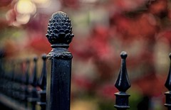 Fence Post and Bokeh (Pete A. McLeod) Tags: fence aperture dof bokeh wroughtiron depthoffield mcleod nikcolorefexpro nikon50mm12 nikond7000 cabbagetowntorontoontariocanada