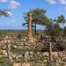 Grave in Lasadacwo - Somaliland