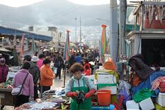 Fish market in Busan (rampx) Tags: fish zeiss 50mm market f14 carl busan planar  planart1450 zf2