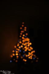 "Christmas Bokeh  ""MERRY CHRISTMAS""   (AXEHD) Tags: christmas bokeh ornaments merry  2012"