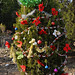 360_Trees_2011_147