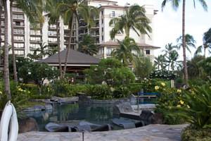 Hawaii2011 101