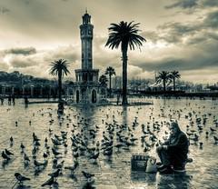 Birds and seed seller, zmir (Nejdet Duzen) Tags: trip travel cloud reflection bird rain turkey square pigeon trkiye clocktower konak izmir bulut ku gvercin yansma meydan turkei seyahat yamur saatkulesi seedseller kuyemisatcs