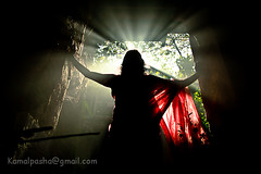 Light Bearer.... (Shad0w_0f_Dark) Tags: light sun tree ray dhaka bangladesh wintermorning 2011 oldstructure canon60d nowabginj
