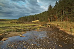 Cropton Forest (mark_mullen) Tags: uk england river landscape countryside nationalpark stream forestry pebbles northyorkshire romanroad pickering northyorkshiremoors croptonforest egton markmullenphotography