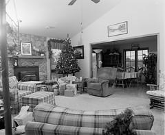 Xmas 2011_Living Room (Nathan Marciniak) Tags: christmas blackandwhite bw holiday mamiya film wisconsin analog mediumformat kodak tmax flash gray ceiling snaps 6x7 delta100 ilford rb67 bounceflash 2011 alienbees roob marciniak nathanmarciniak
