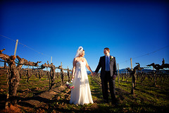Hench & Valerie Wedding at Ponte Family Estate Winery in Temecula