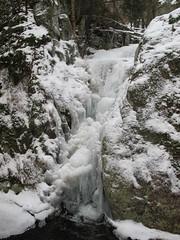 Frozen In Time... (ccindigirard) Tags: nature aclass natureworld upperwolfjaw naturesanctuary royalgroup thenaturegroup naturewatcher natureoutdoorlife qualitypixels