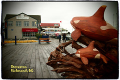 """First Breath"" - Orca Wooden Sculpture @ Steveston () Tags: sculpture fish canada wooden bc market harbour richmond boardwalk orca killerwhale steveston whalewatching stevestonvillage m43 firstbreath bayviewstreet microfourthirds pinholeartfilter lumix20mmf17 olympuspenep3 orcawoodensculpture"