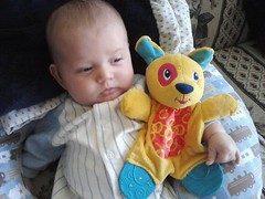 Got his crunchy toy (scar_meluver) Tags: baby david toy cellphone babytoy