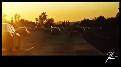 Interstate 10 Freeway - View Of Downtown Los Angeles (Hsin Tai Liu) Tags: california street 2 west canon lens photography eos 1 yahoo liu los google search flickr downtown angeles 10 1988 tai freeway interstate kit february 35 hsin bing 2012 covina autofocus stumbleupon 70mm 50d twitter tumblr