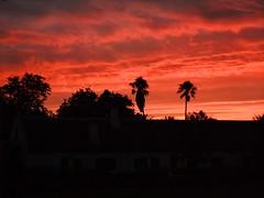 Sunset in South Africa (picaddict) Tags: sunset southafrica sonnenuntergang capetown stellenbosch südafrika spiersstellenbosch