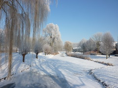 Wonderful World (Cathpetsch) Tags: winter white snow cold ice nature netherlands landscape frozen niceshot bevroren nederland natuur soe landschap autofocus vorst icecold wow1 wow2 wow3 wow4 ijskoud zevenbergen wow5 wowhalloffame whiteworld andromeda50 panasonicdmctz6 doubleniceshot tripleniceshot mygearandme thegalaxyaward thegalaxyhalloffame flickrstruereflection1 flickrstruereflection2 flickrstruereflection3 flickrstruereflection4 flickrstruereflection5 flickrstruereflection6 4timesasnice 6timesasnice 5timesasnice 7timesasnice niceasitgets rememberthatmomentlevel4 rememberthatmomentlevel1 thesupersixacademy rememberthatmomentlevel2 rememberthatmomentlevel3 rememberthatmomentlevel5