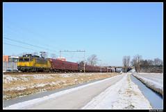 DBS1602+61601_Ledn_07022012 (Dennis Koster) Tags: sneeuw trein dbs rn 1602 railion beverwijk warmond akzonobel goederentrein shimmns staaltrein 61601bvhckfhn dbsrn teylingereind