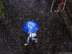 chuva (Celso Kuwajima) Tags: rain umbrella canon eos sopaulo chuva streetphotography tokina 7d moema 80400mmf4556