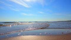 Ostsee (guydarit) Tags: beach strand balticsea ostsee usedom