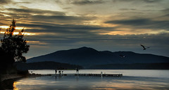 Sunset Jetty 3 (caralan393) Tags: sunset jetty gulls wallaga