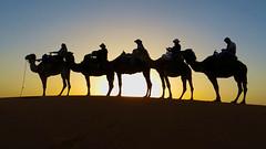 Sahara Sunrise (macloo) Tags: travel camping sahara trek desert morocco camels