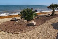 IMG_1947site3 (janohighway) Tags: summer sculpture art design seaside community selection environment choice recycling collective debate teignmouth outdoorart ecoart sculpturetrail devonuk womenartists trail2016