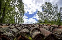 Un selfie sobre el tejado? ... (carmen.fdez.mtnez) Tags: perspectiva nwn patonesdearriba paisajerural carmenfernndez