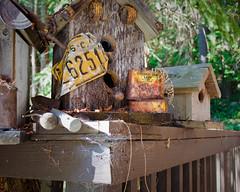 Birdhouse Fence (L E Dye) Tags: summer canada fence nikon bc britishcolumbia birdhouse mayneisland d5100 fencefriday ledye
