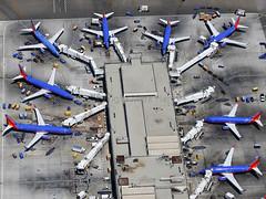 Terminal 1 at LAX (Mark Harris photography) Tags: california ca southwest canon la aircraft boeing lax spotting 737