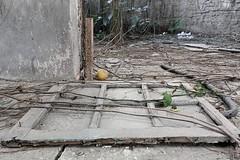 (Bernardo Borges) Tags: old urban house abandoned photography casa paolo ruin sp urbana paulo fotografia exploration sao so velho ue urbex pinheiros abandonado runas explorao