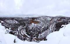 Snow Covered Canyon