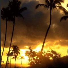 My Africa ..... (Anna Chiara Moggia) Tags: africa travel sky storm me clouds nuvole alone meeting business cielo viaggio thunder temporale tempesta nubi affari annachiara