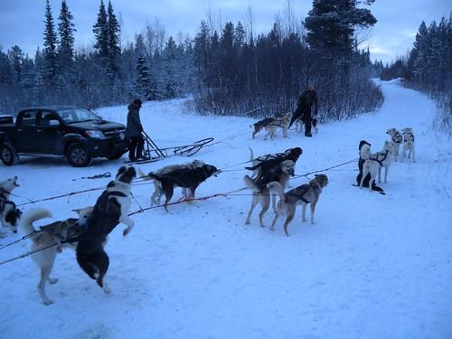 111206_Lappland_062