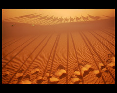 DSC_8135 (lorytravelforever) Tags: africa me sahara photography dvd ride desert archive morocco marocco deserto erg ergchebbi superaplus aplusphoto mygearandme mygearandmepremium mygearandmebronze mygearandmesilver mygearandmegold mygearandmeplatinum marzo2012challengewinnercontest