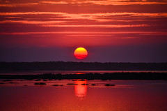 Por de Sol Africano no Algarve (_Rjc9666_) Tags: light sunset red sea 2 sun seascape sol nature landscape faro rouge soleil nikon vermelho algarve magical por 48 magie magia d5100 mygearandme mygearandmepremium flickrstruereflection1 flickrstruereflection2 flickrstruereflection3 flickrstruereflection4 flickrstruereflection5 flickrstruereflection6 flickrstruereflection7 flickrstruereflectionexcellence rememberthatmomentlevel4 rememberthatmomentlevel1 rememberthatmomentlevel2 rememberthatmomentlevel3 rememberthatmomentlevel7 rememberthatmomentlevel9 rememberthatmomentlevel5 rememberthatmomentlevel6 rememberthatmomentlevel8 rememberthatmomentlevel10 ©ruijorge9666