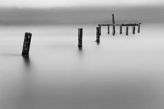 Silver and Cold (Aaron Eakin) Tags: sea bw cold water silver pier washington pugetsound pilings skeletal hansville pointnopoint