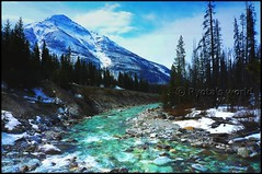 Canadian rockies. (Johnston canyon) (Ryota's world) Tags: travel winter mountain snow canada tree nature composition river landscape flow scenery canyon panasonic worldheritage banffnationalpark canadianrockies fx35 johnstoncanyon natoinalpark