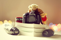Welcome Canon 5D Mark II (5/5)