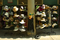 Hat Stand (elhawk) Tags: toucan neworleans hats frenchquarter frenchmarket