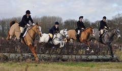 Quorn Hunt (Vicktrr) Tags: horses english countryside jump jumping leicestershire hunting hound boxingday brush british meet loughborough tweed foxhunting huntsman hunters foxhound foxhounds 2011 horsejump huntmeet quornhunt