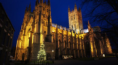 Christmas at Canterbury Cathedral (babasteve) Tags: christmas uk england babasteve canterburycathedral cathdral steveevans
