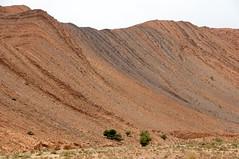 Geplooide bergrug nabij At Abdelkadir, Marokko 2011 (wally nelemans) Tags: morocco maroc folds marokko bergrug geplooide abdelkadir