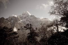 IMG_3086 (SamHawleywood) Tags: travel nepal india kids trek walking hike varanasi lama spiritual himalayas ganga servitude theganges youthleadership globalimmersion berniekelly samhawleywood