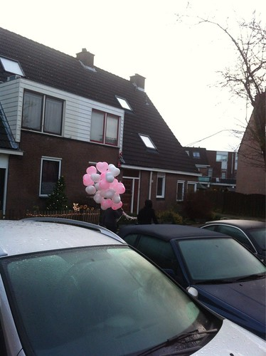 Heliumballonnen Hartballonnen Roze en Wit