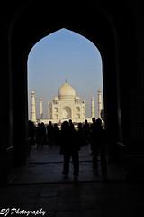 india (124)Taj Mahal