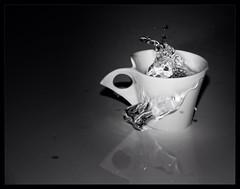 (LaFr@) Tags: water coffee canon splash biancoenero 40d