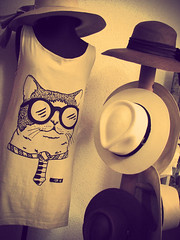 (www.caritadegato.cl) Tags: cats fashion shirt cat design handmade moda clothes tienda gato kitties neko diseo purses maneki ilustracion accesories bolsos vestidos accesorios serigrafia poleras polerones caritadegato barrioitalia caritadegatocl