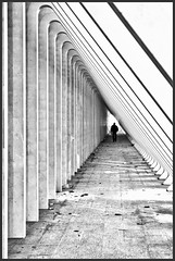 The Calatrava Tunnel (Explore) (Bert Kaufmann) Tags: man guy station architecture canon concrete design vanishingpoint blackwhite belgium belgique gare zwartwit belgi tunnel explore trainstation calatrava transparency vanishing depth glas luik santiagocalatrava architectuur beton lige wallonie lttich staal verdwijnpunt explored canoneos400d guillemains ligeguillemains ligeguillemainsstation
